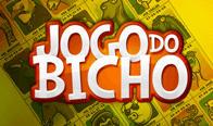 Jogar Jogo do Bicho