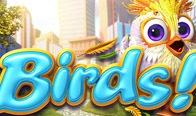 Jogar Birds