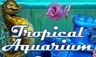 Jogar Tropical Aquarium