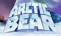 Jogar Arctic Bear