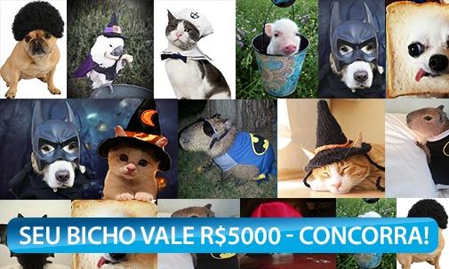 Meu Bicho Lindo vale R$ 5.000