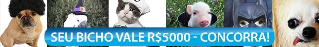 Meu Bicho Lindo vale R$ 5.000!